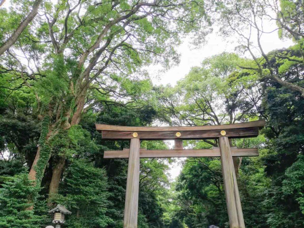 Tokyo Harajuku Meiji Jingu